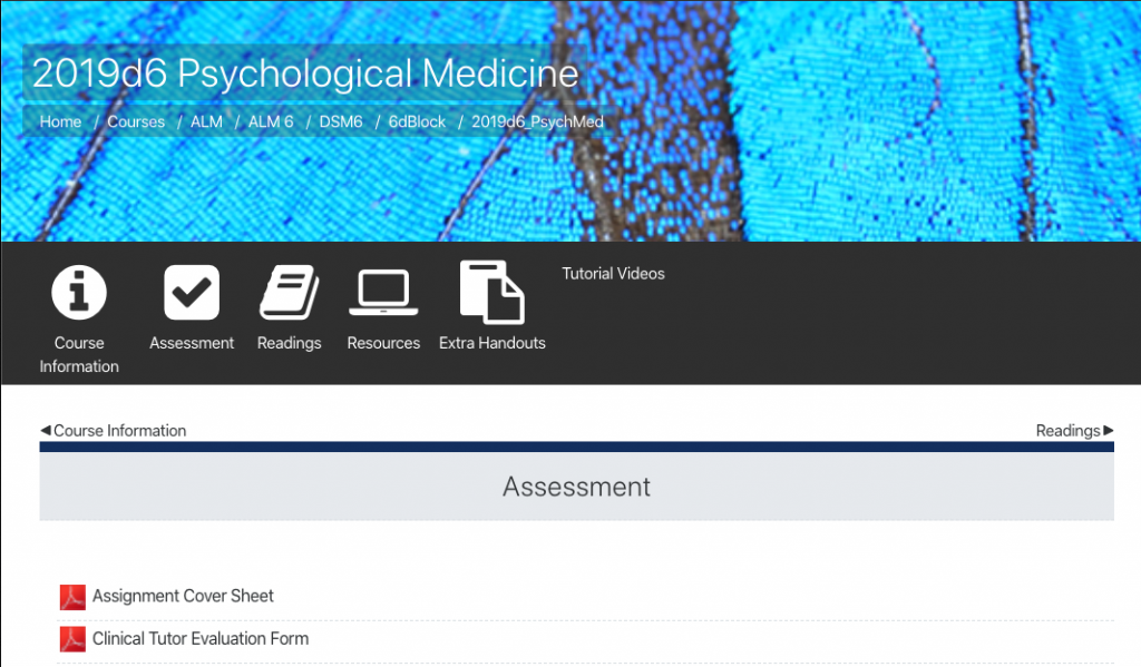 Screenshot of information required in assessment section of MedSchool module.